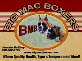 Big Mac Boxers Logo
