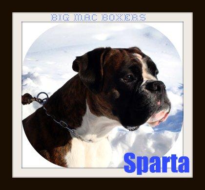 spartacus2-1